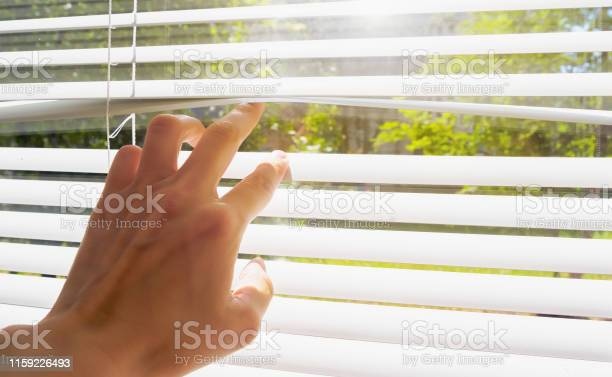 Photo of hand opens with fingers blinds, outside window there is sunlight and green trees. Concept hot summer and scorching sun