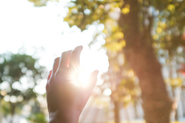 overhandigen van de zon - menselijke vinger stockfoto's en -beelden