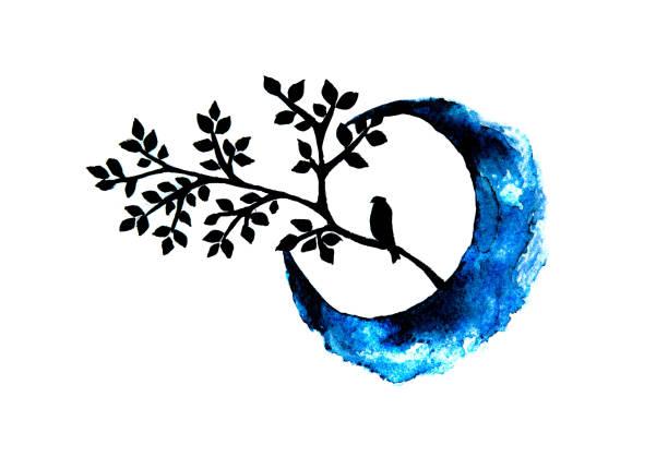 hand painted watercolor bird and half moon - traumfänger zeichnung stock-fotos und bilder