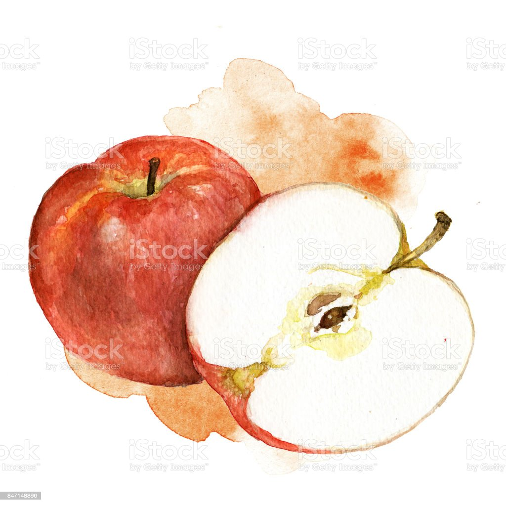 Hand painted watercolor illustration of red apple with artistic stain in the background stock photo