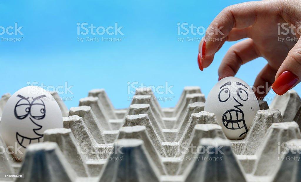 hand picking egg royalty-free stock photo