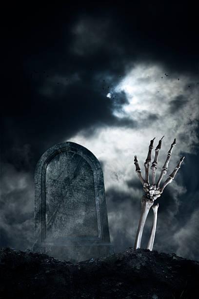 hand - skelett hand stock-fotos und bilder