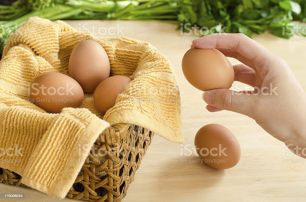 Hand Placing All Eggs In One Basket stock photo