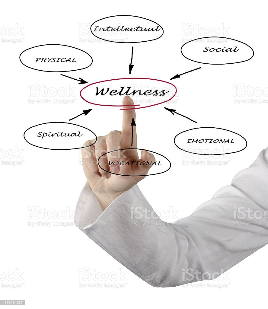 Hand pointing to a diagram of wellness  royalty-free stock photo