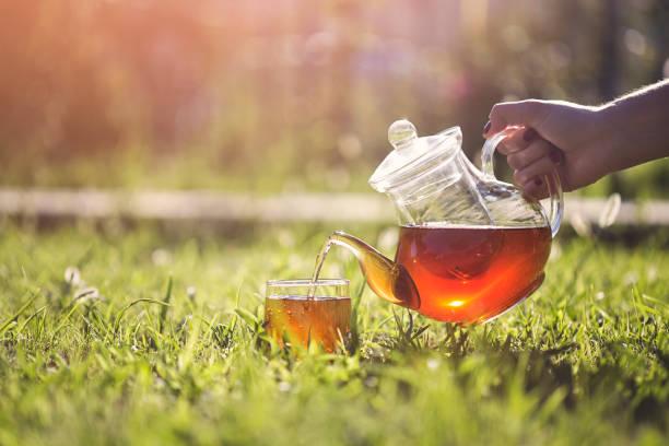 hand-kräuter-tee im garten gießen - grüner tee koffein stock-fotos und bilder