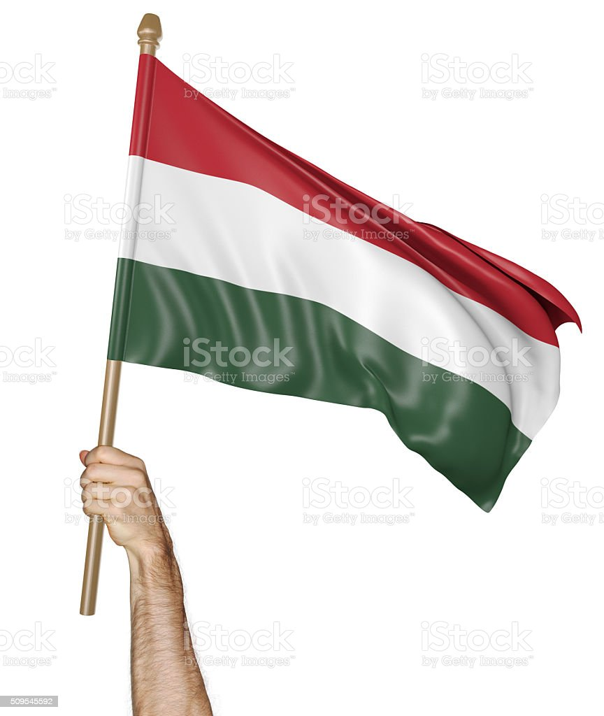 Hand proudly waving the national flag of Hungary stock photo