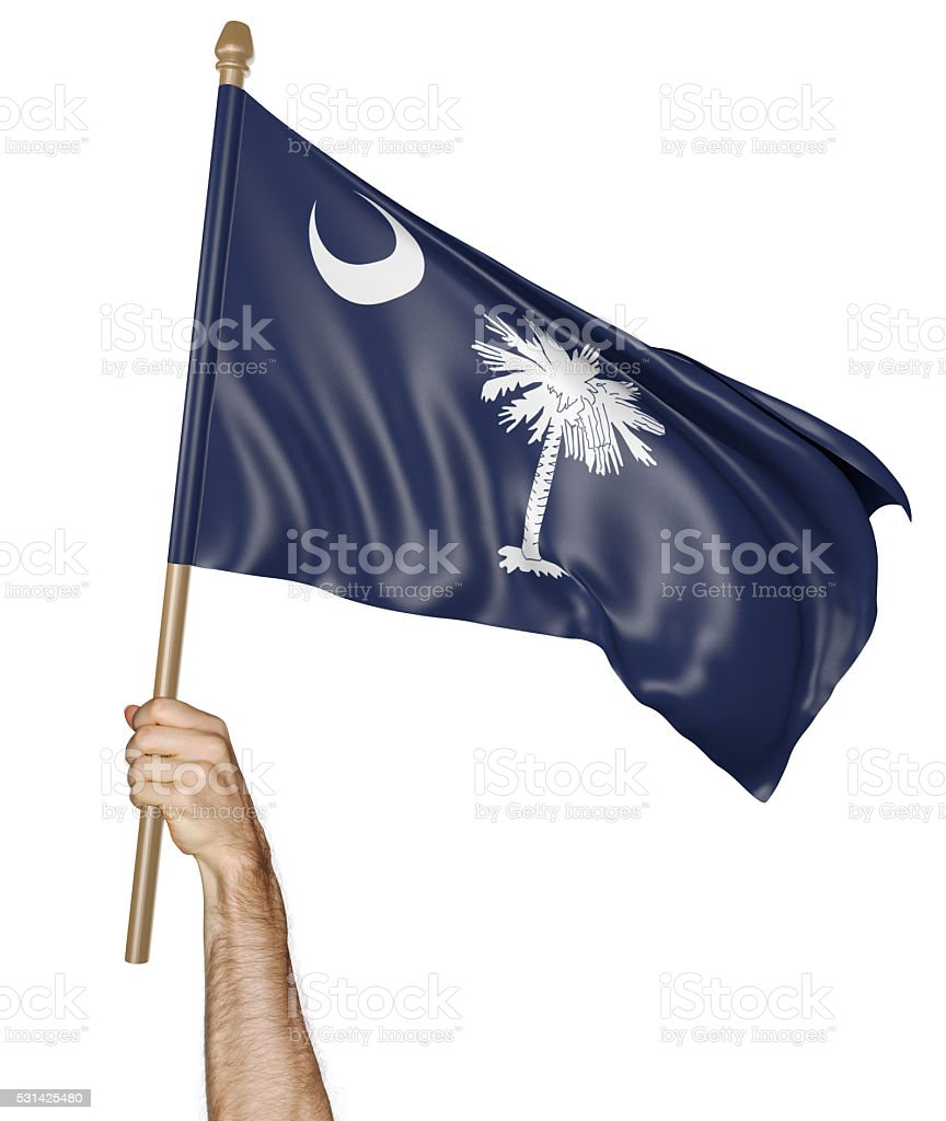 Hand proudly waving the state flag of South Carolina stock photo