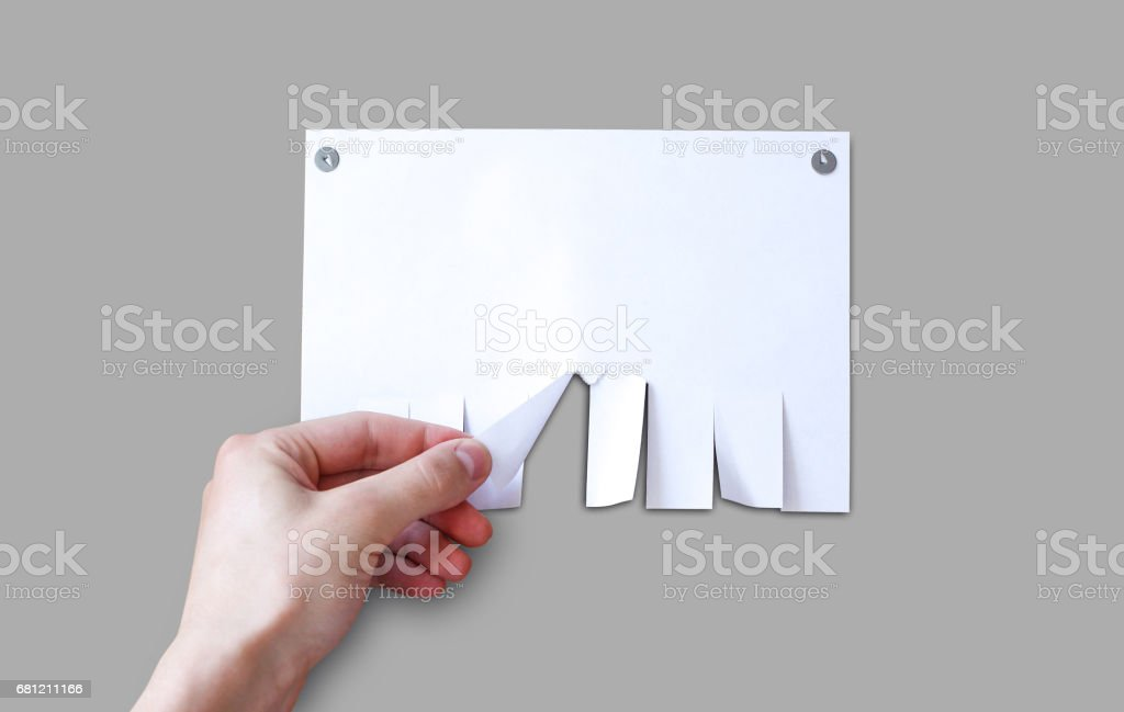 Hand pulls a piece of paper. Empty paper ad loose leaves isolated on a grey background. Attached metal buttons. Blank advertisement with cut slips stock photo