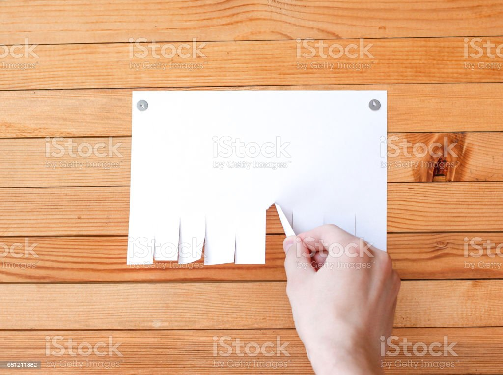 Hand pulls a piece of paper. Empty paper ad loose leaves on a wooden wall. Attached metal buttons. Blank advertisement with cut slips stock photo