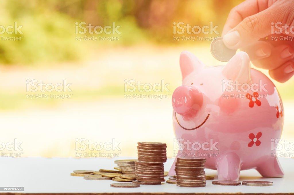 手把錢放在粉紅色的儲錢罐和樁的硬幣,在增長,概念,保存和商業投資 免版稅 stock photo