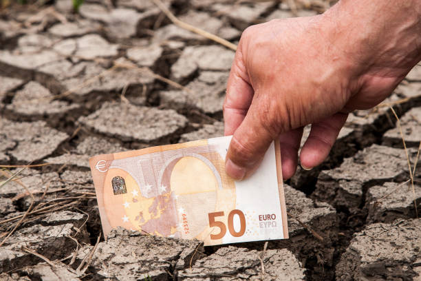A hand puts a fifty euro note in the dried-up soil. stock photo