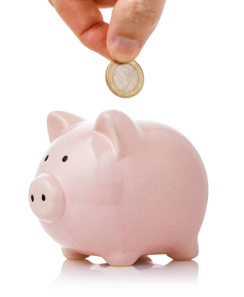 hand puts one euro into the piggy bank. concept on topic of the savings - maialino foto e immagini stock