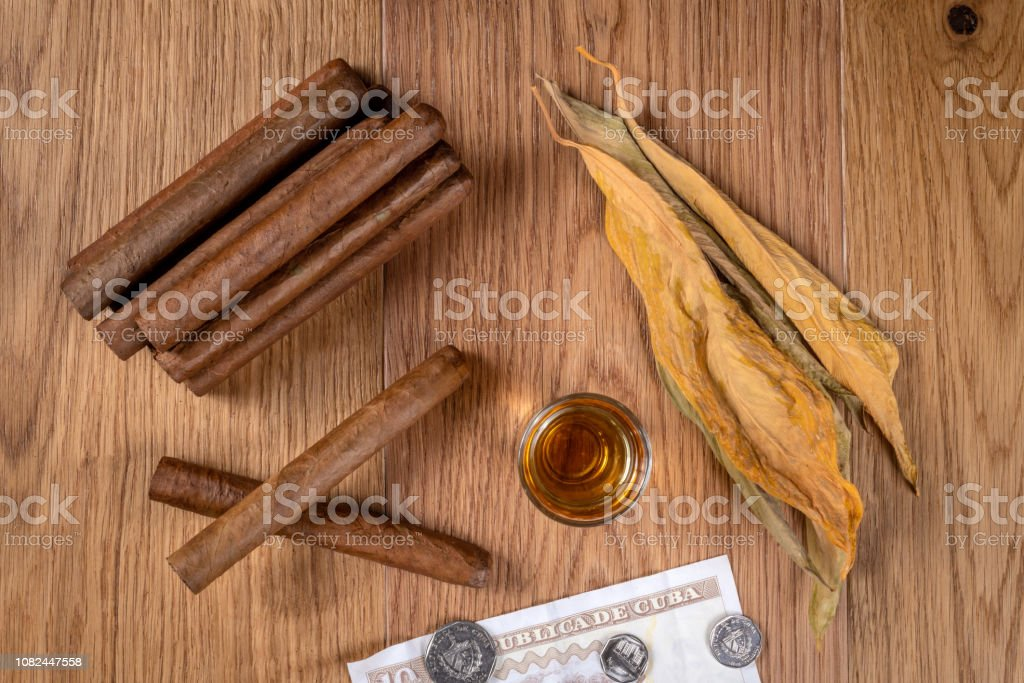 Hand rolled Cuban cigar and tobacco leaves stock photo