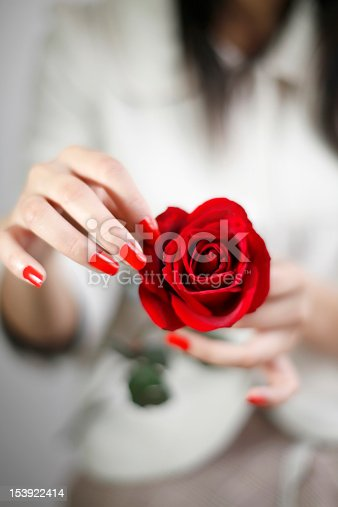 186825340 istock photo Hand roses 153922414