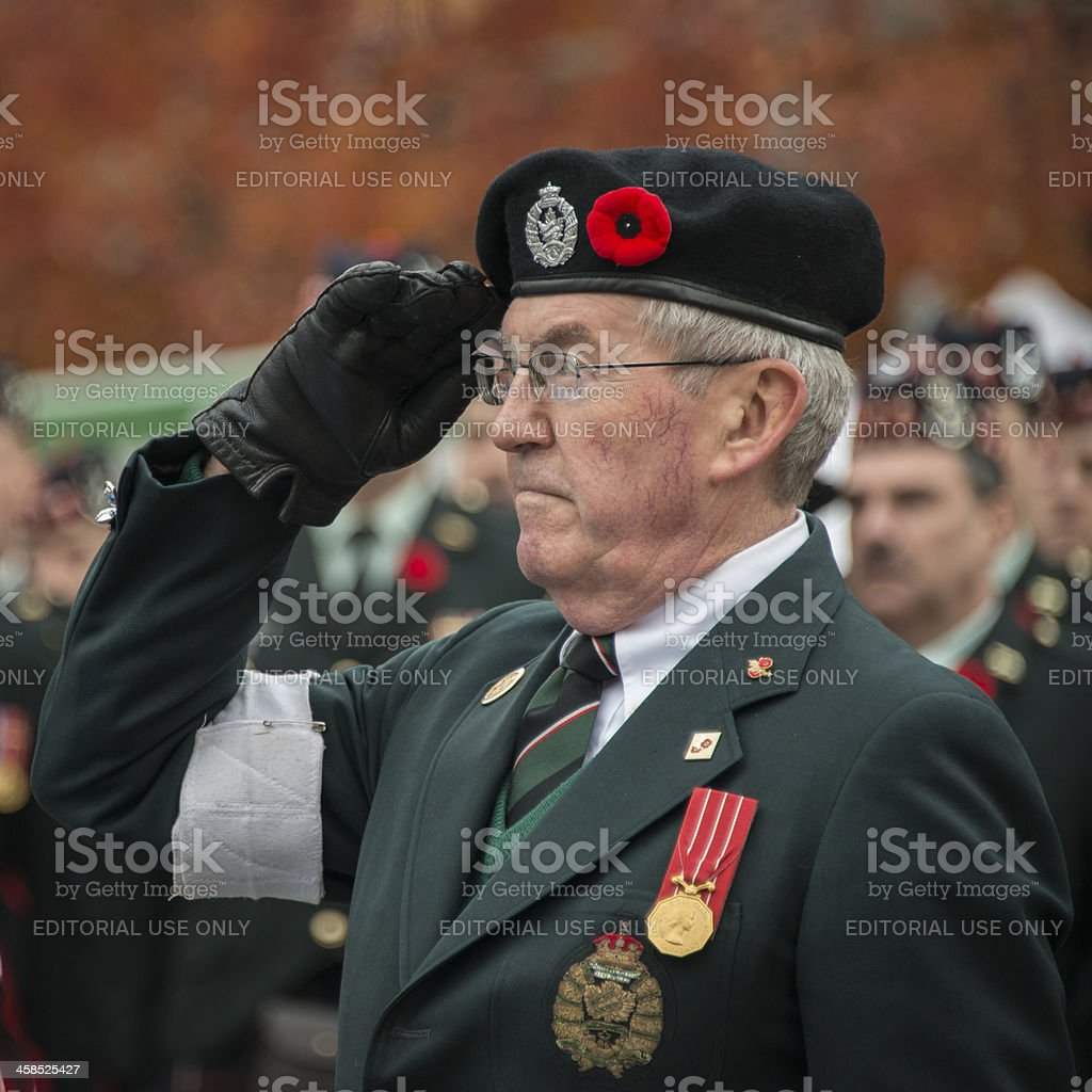 Hand Salute royalty-free stock photo