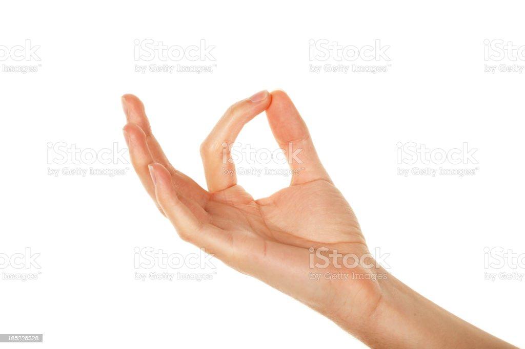 Hand showcasing something up on white stock photo