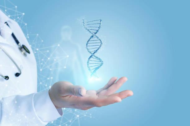 mano con adn. - investigación genética fotografías e imágenes de stock