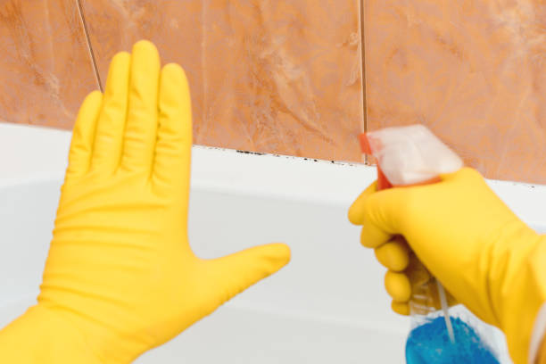 hand zeigt stop schimmel im bad, die andere hand hält eine sprühdose. - fleckenentferner stock-fotos und bilder