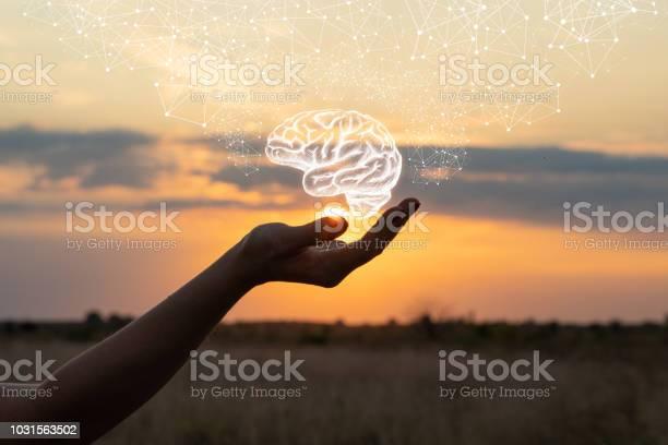 Hand shows the brain picture id1031563502?b=1&k=6&m=1031563502&s=612x612&h=zi83dwwt9gwzaje4pan okl7tsiezvakafx00sm idu=