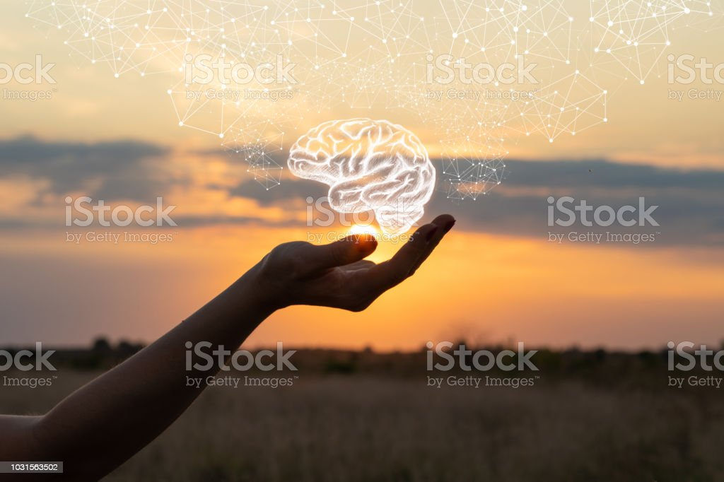 Hand shows the brain . stock photo