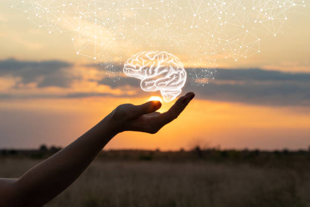 Hand shows the brain . Hand shows the brain in the sun and sky. neurons stock pictures, royalty-free photos & images
