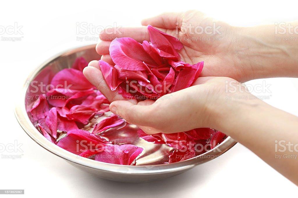 Hand spa royalty-free stock photo