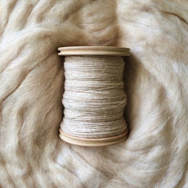 hand spun yarn on a bobbin and alpaca fleece - wool stock photos and pictures