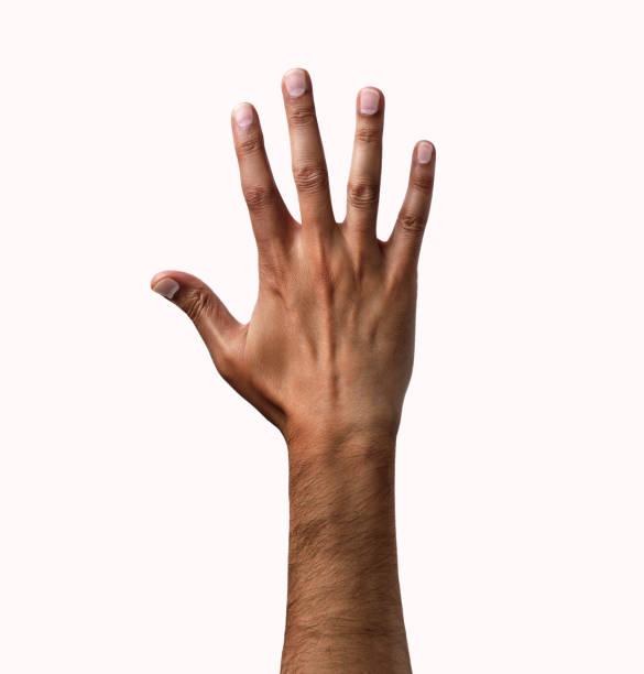 símbolo de mano - brazo fotografías e imágenes de stock