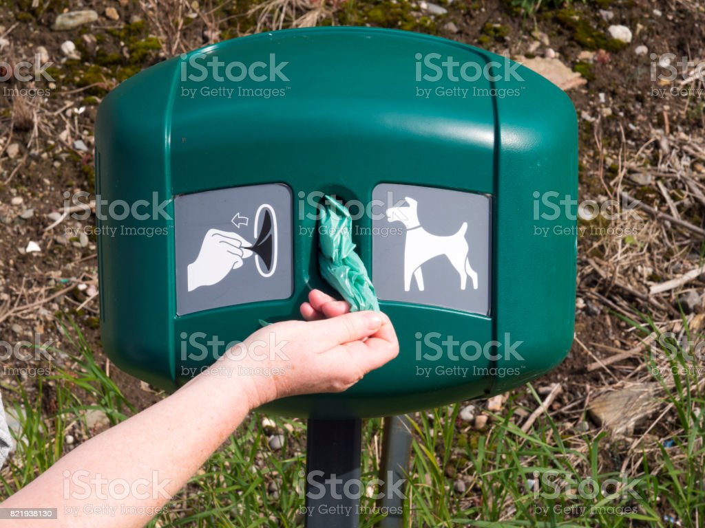 Hand taking dog poop bag from dispenser Picture of a dog poop bag dispenser with a hand taking a bag from it. Bag Stock Photo