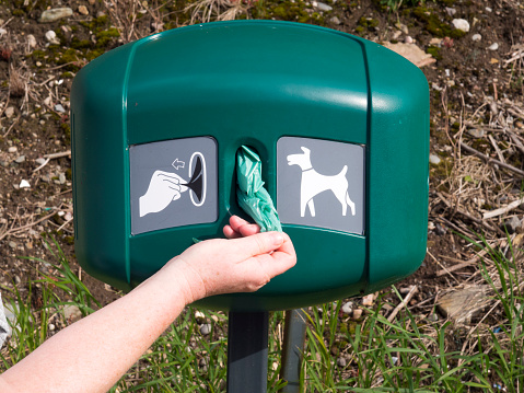Hand Taking Dog Poop Bag From Dispenser Stock Photo - Download Image Now