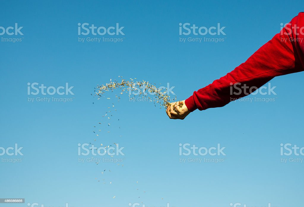 Hand Throwing Seeds stock photo
