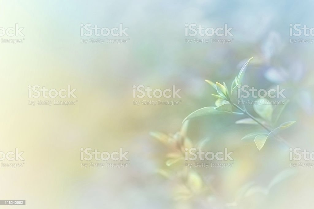 Hand Tinted Soft Nature Background royalty-free stock photo