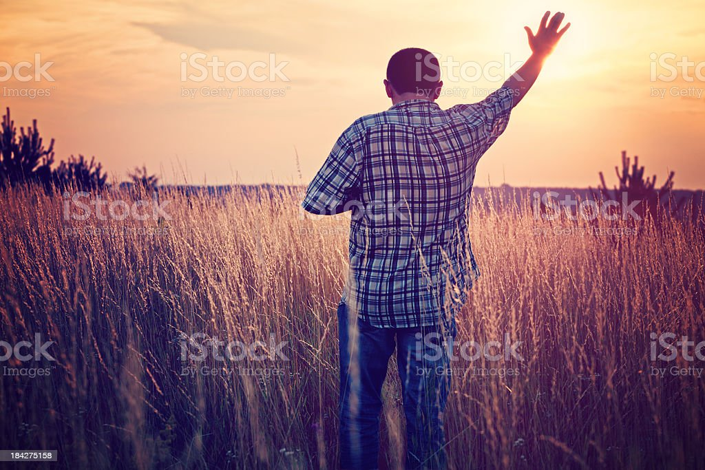 Hand to Heaven royalty-free stock photo