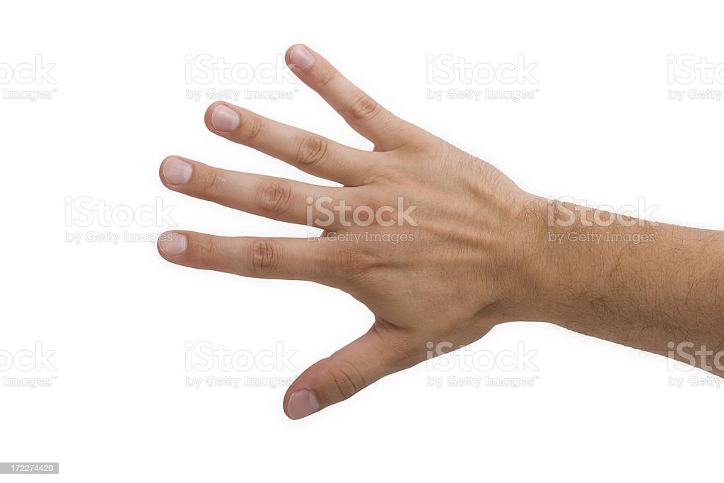 Hand Top View Stock Photo & More Pictures Of Adult