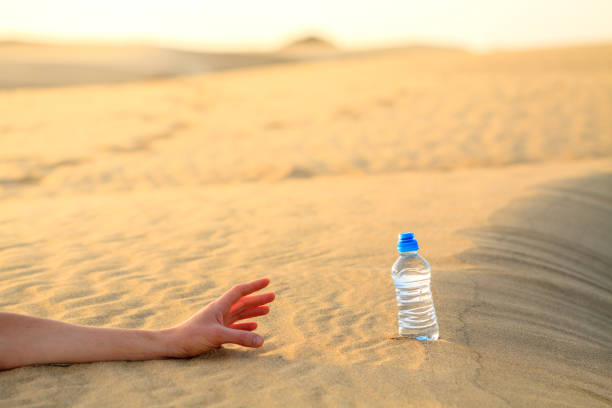 Hand try to catch the bottle of water on sand desert in hot temperature. Concept of to die of thirst. stock photo