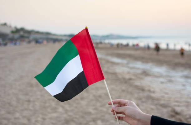hand united arab emirates flag on the beach - uae flag стоковые фото и изображения