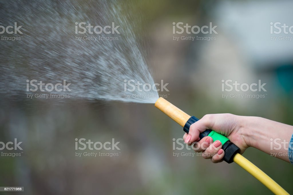 hand watering garden with sprinkler, close up stock photo
