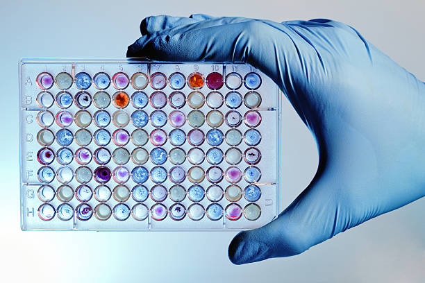 Hand with a microplate assay A hand with a microplate filled with color samples specimen holder stock pictures, royalty-free photos & images