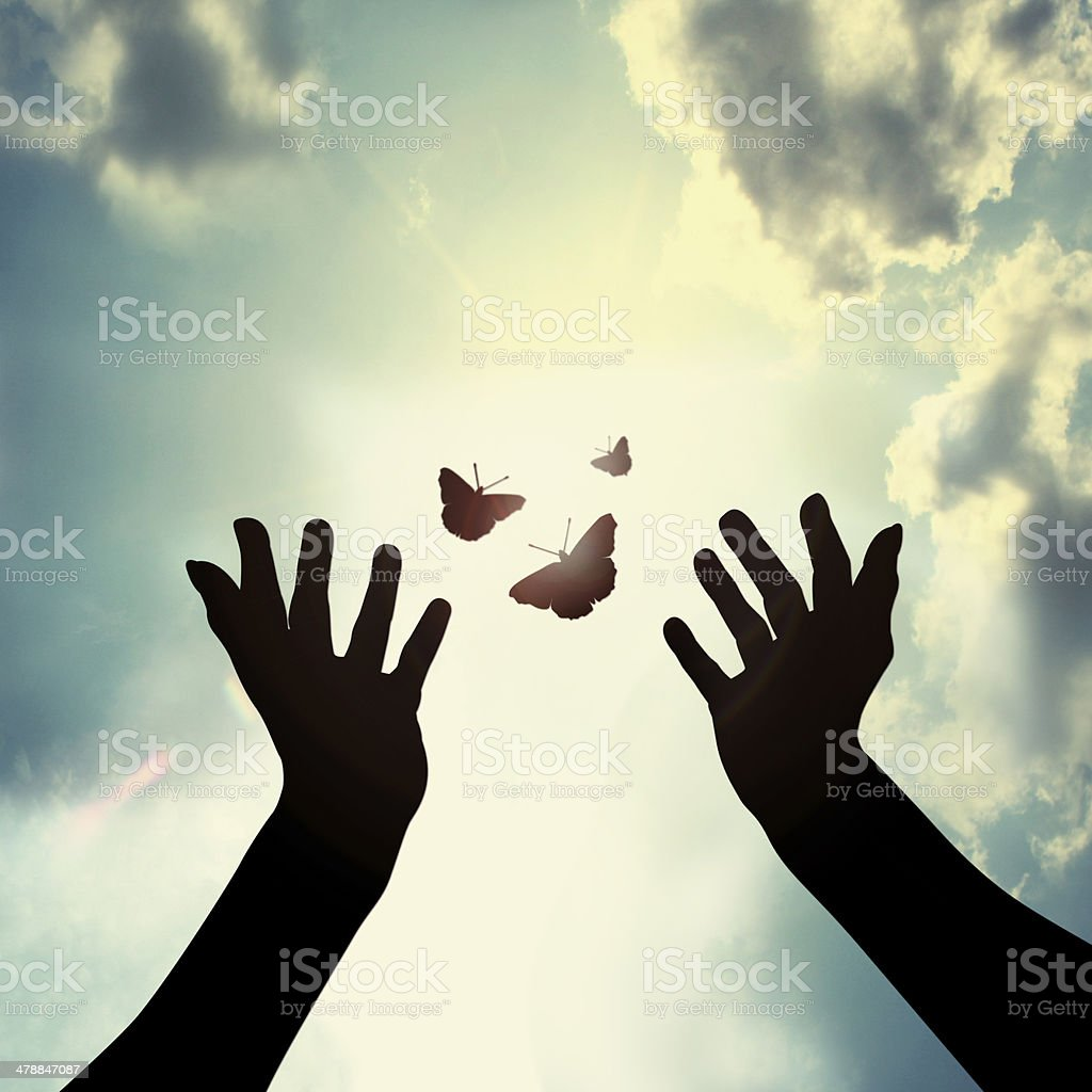 Hand with butterfly in sky stock photo