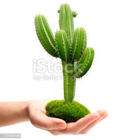 Hand with Cactus