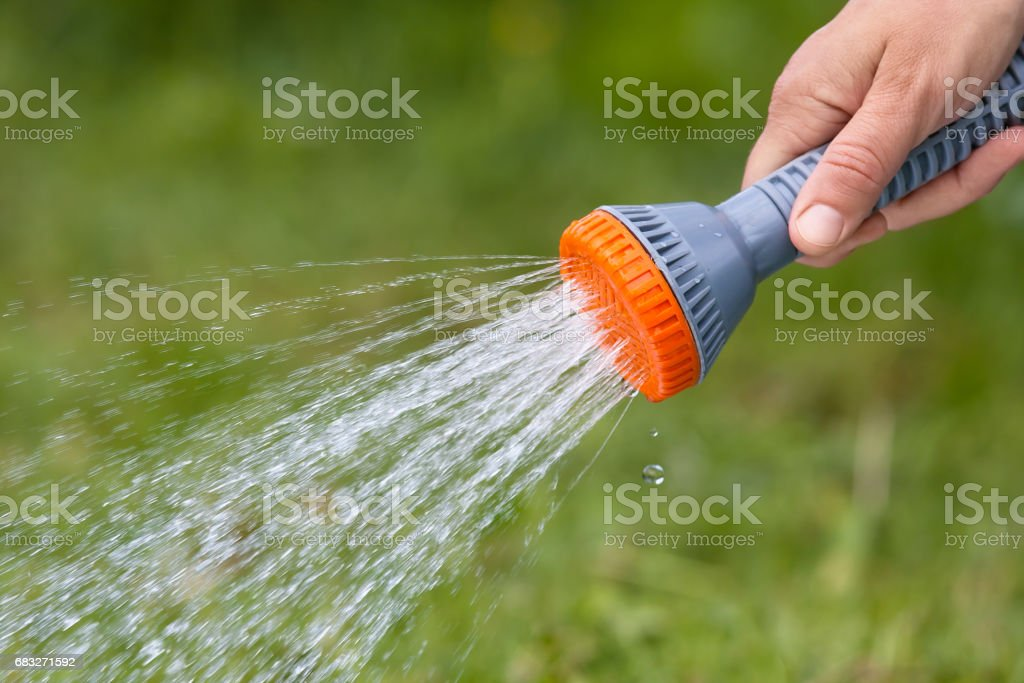 hand with hose sprinkler royalty-free stock photo