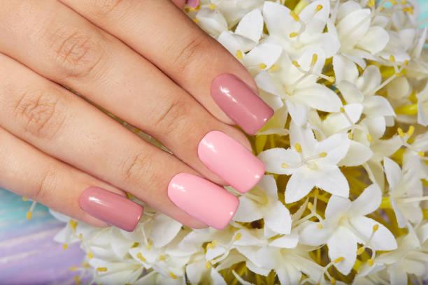 hand mit langen gepflegten kunstnägel mit rosa nagellack gefärbt - gelnägel stock-fotos und bilder