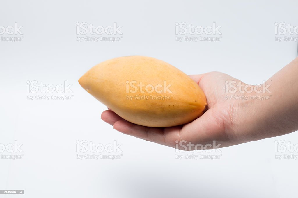 hand with  mango royalty-free stock photo