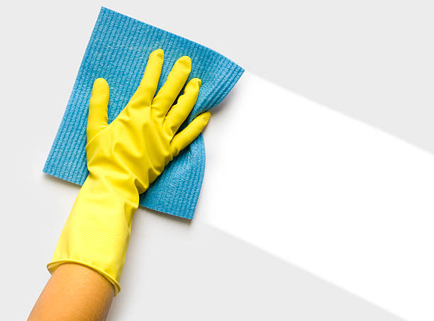 hand with sponge - hygiene stock pictures, royalty-free photos & images