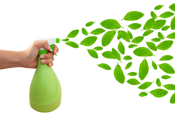 Borrifador de mão com leafs e verde Isolado no branco - foto de acervo