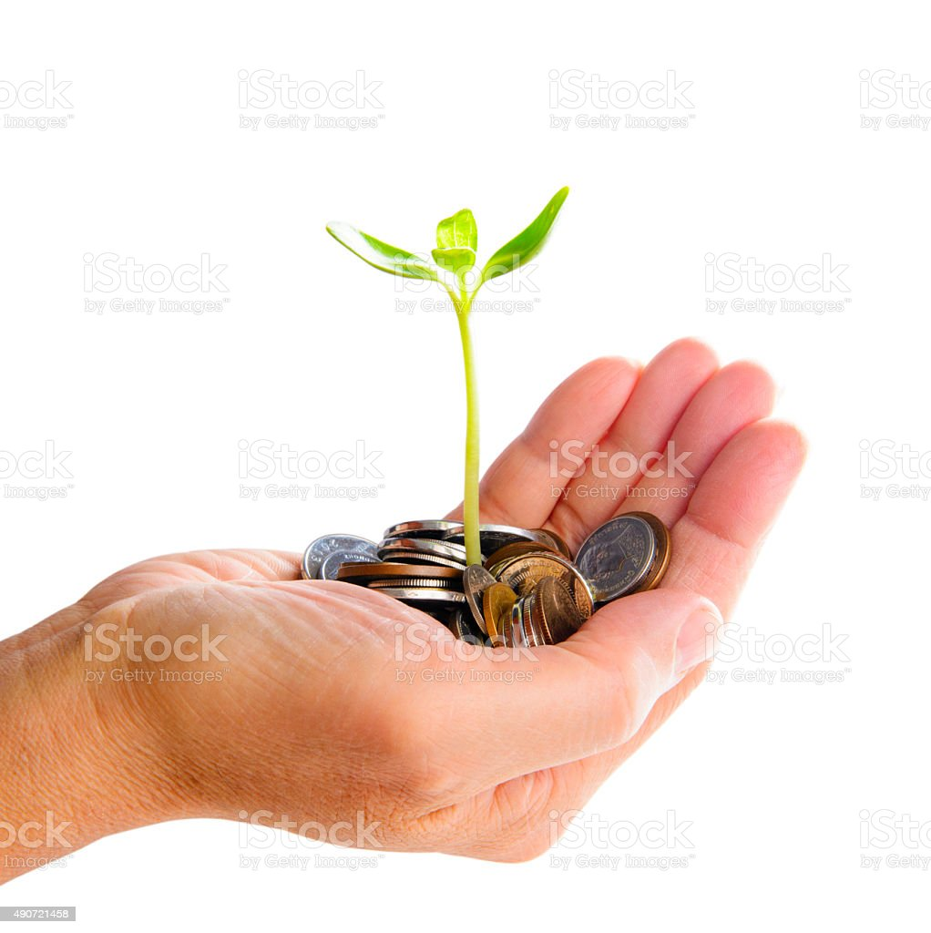 Hand with tree growing from pile of coins stock photo