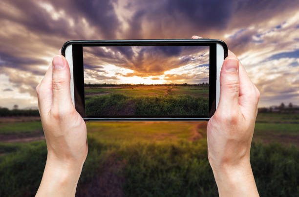 hand woman taking photo at sunset. - photo messaging stock photos and pictures