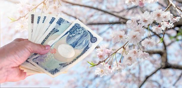 hand-frau mit japanischen währung yen-banknoten auf sakura kirschblüte baum im gongendo park japan reise kosten-konzept. - geld schön verpacken stock-fotos und bilder