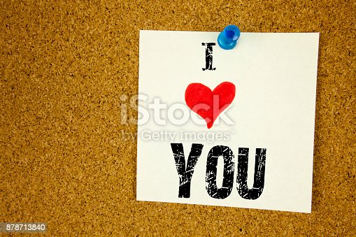 1068057246 istock photo Hand writing text caption inspiration showing I Love Thank You concept meaning Giving Gratitude Appreciate Message Loving written on sticky note, reminder isolated background with copy space 878713840