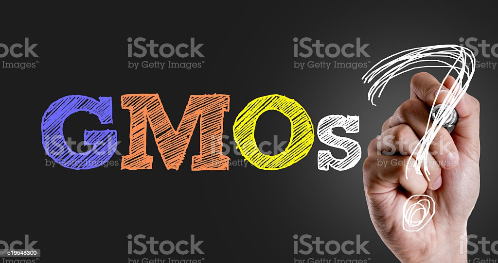 Hand writing the text: GMOs? stock photo